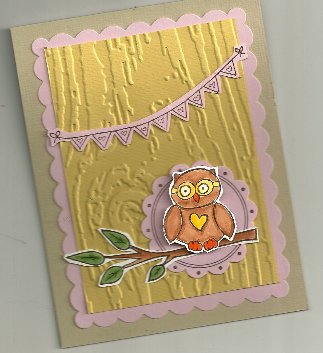 pink wise owl